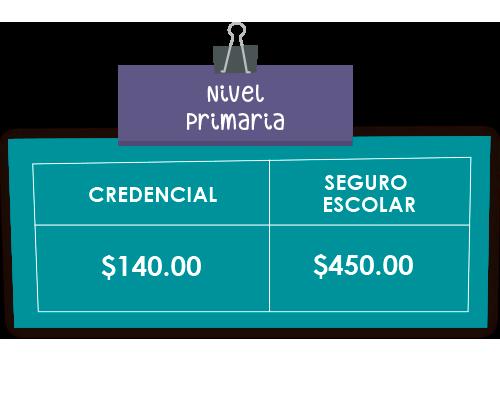 NIVEL_PRIMARIA_2020